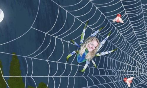 Spin in het web 52