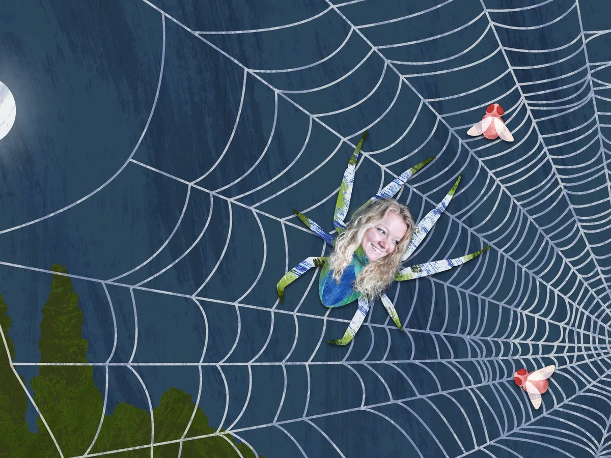 Spin in het web 1