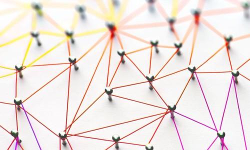 Wat is een netwerkorganisatie? 43