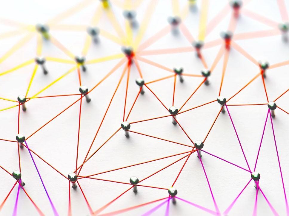 Wat is een netwerkorganisatie? 1